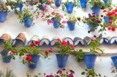 Old Wall with Flowers Decorations, European Street, Spain  — Stok fotoğraf