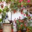 Courtyard with Flowers decorated and Old Well — Stock Photo #56035241