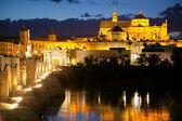 Famous Mosque (Mezquita) and  Roman Bridge at night, Spain, Eur — Stock Photo