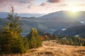 Beautiful Autumn in Mountains at sunset time. Trees,  peaks, clo — Stock Photo