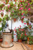 Courtyard with Flowers decorated and Old Well  — Foto de Stock