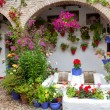 Flowers Decoration of Vintage Courtyard, typical house in Cordob — Stock Photo #56736329
