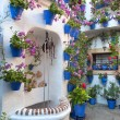 Flowers Decoration of Vintage Courtyard — Stock Photo #56736497