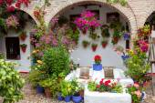 Flowers Decoration of Vintage Courtyard, typical house in Cordob — 图库照片