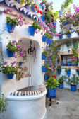Flowers Decoration of Vintage Courtyard — Stockfoto
