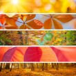 Set of Different Autumn Banners - colorful backgrounds, beautifu — Stock Photo #81805540
