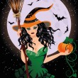 Happy Halloween. Sexy night witch with pumpkin, vector illustration — Stock Vector #54881013