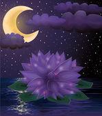 Magic lotus flower background, vector illustration — Stock Vector