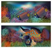 Underwater banners with tropic fish, vector illustration — Vector de stock