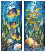 Podwodne banery z muszli i tropikalna ryba, ilustracji wektorowych — Wektor stockowy