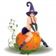 Halloween sexy witch, vector illustration — Stock Vector #82038024