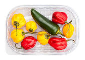 Chili peppers in plate — Stock Photo