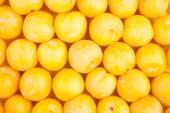 Yellow plum texture — Foto de Stock