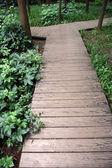 Wooden walkway in park — Stock Photo