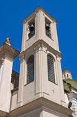 Church of Carmine. San Severo. Puglia. Italy. — Stock Photo