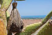 View of Rocca Imperiale. Calabria. Italy. — Foto de Stock