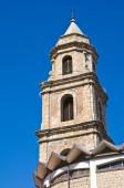 Mother Church of Satriano di Lucania. Italy. — Zdjęcie stockowe