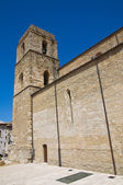 Cathedral of Acerenza. Basilicata. Italy. — Stock Photo