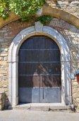 Wooden door. Guardia Perticara. Basilicata. Southern Italy. — 图库照片
