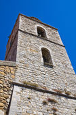 Mother Church of Pietragalla. Basilicata. Italy. — Stockfoto