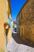 Alleyway. Pietragalla. Basilicata. Italy. — Stock fotografie