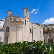 Church of Madonna dei Martiri. Altamura. Puglia. Italy. — Stock Photo #60546385