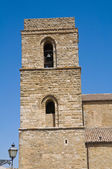 Cathedral Church of Acerenza. Basilicata. Southern Italy. — ストック写真