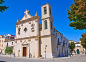 Church of Carmine. San Severo. Puglia. Italy. — Stockfoto