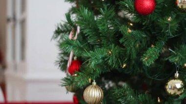 De focused Christmas light Background — Stock Video