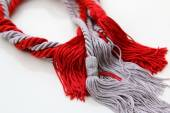 Grey and red ropes with tassel isolated — Stock Photo