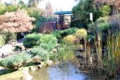 A Stone Lantern And The Garden With Maple — Stok fotoğraf