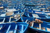 Blue fishing boats aligned in Essaouira — Stock Photo