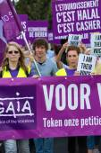 Belgian Gaia activists protest on the streets of Brussels — Stock Photo