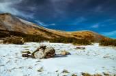 Het landschap in de Karpaten — Stockfoto