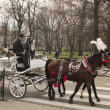 KRAKOW, POLAND - March 29, 2015: Horse carriage on the streets o — Stock Photo #68881267