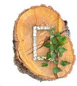 Rustic Wooden Alphabet — Stock Photo