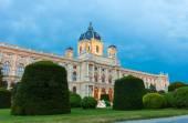 Museum of Fine Arts, Vienna — Stock Photo