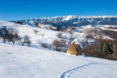 Typical winter scenic view with hayracks — Stockfoto