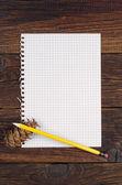Leere seite aus einem notizbuch — Stockfoto