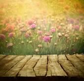 Fleur fond — Photo