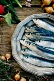 Frische Sardinen — Stockfoto