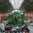 Interior of Atocha Railway Station in Madrid — Stock Photo #52840121