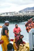 Fishermen unloading catch in the port — Stock Photo