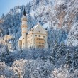 Neuschwanstein Castle in wintery landscape. Germany — Stock Photo #63342069
