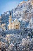 Neuschwanstein Castle in wintery landscape. Germany — Stock Photo