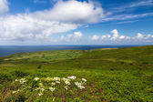 Cornish coast between Lands End and St. Ives, Cornwall, England — ストック写真
