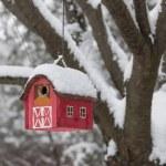 Bird house on tree in winter — Stock Photo #57692647