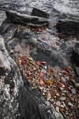 Georgian Bay rocks — Stock Photo