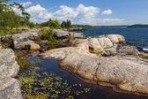Rocky shore in Georgian Bay — Stock Photo