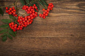 Mountain ash berries over wood — Stock Photo